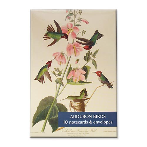 * Briefkarten Fitzwilliam Museum - Audubon Vögel