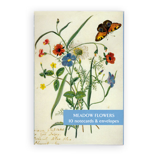 *  Briefkarten des Fitzwilliam Museums - Meadow Flowers | Wiesenblumen