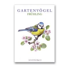 Briefkarten »Gartenvögel im Frühling« mit 8 Motiven »