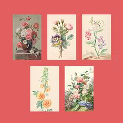 Briefkarten des Fitzwilliam Museums - English Country Garden   Englische Gärten »