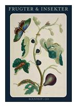 Briefkarten Maria Sibylla Merian »Früchte & Insekten | Frugter & Insekter«