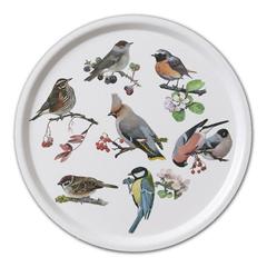 Tablett »Gartenvögel« aus skand. Birkenfurnier mit Kunststoffbeschichtung